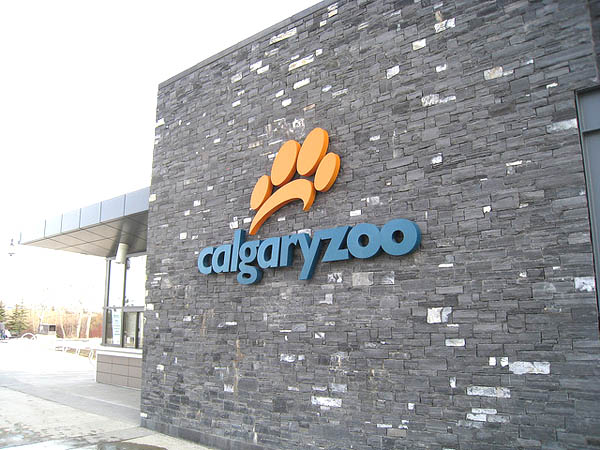 Calgary Zoo Inspired Dino Dining Restaurants